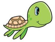 Trinity turtle